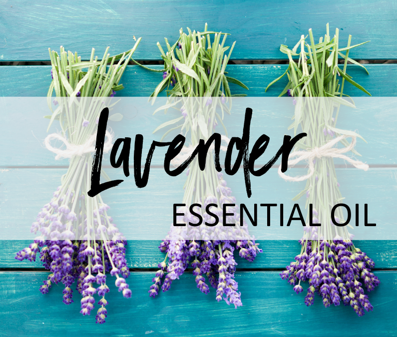 Lavender Essential Oil – Uses & Benefits